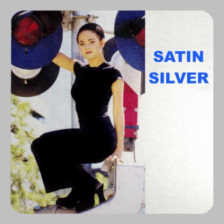 Metal Satin Silver Prints Example