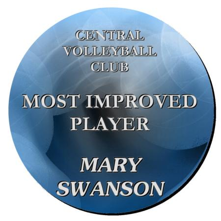 Volleyball Plaque 12 Inch Example