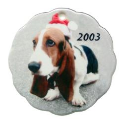 Porcelain Ornament - Scallop Example