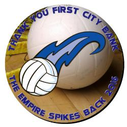 Volleyball Plaque 16 Inch Example